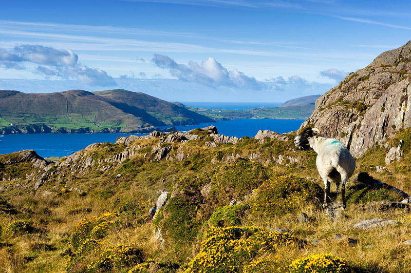 The beautiful Beara Peninsula