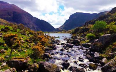 Travelling to Ireland? – Practical Information Before You Visit
